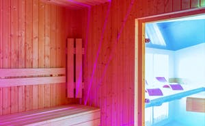 Fuzzy Orchard - The sauna looks out over the indoor pool