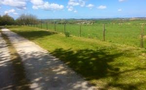 Driveway panorama